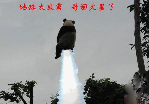 喷气式熊猫回火星了咯